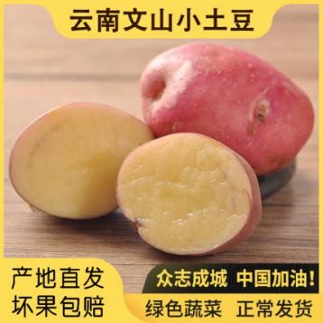 喵鲜记 云南文山小土豆 5斤
