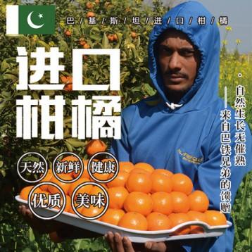 逸知鲜 巴基斯坦进口大柑橘5斤