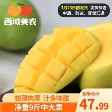 西域美农 越南玉芒芒果 净重9斤以上