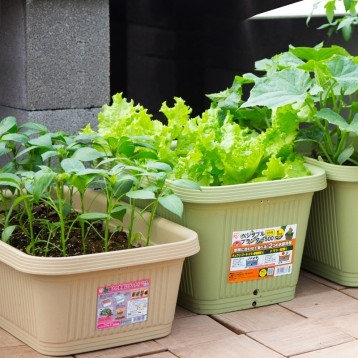26元起包邮!爱丽思 长方形花盆 种菜盆种植箱(50-70cm可选)