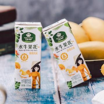 悠纯 百香果/芒果风味 越南风味水牛果乳 200ml*10盒装